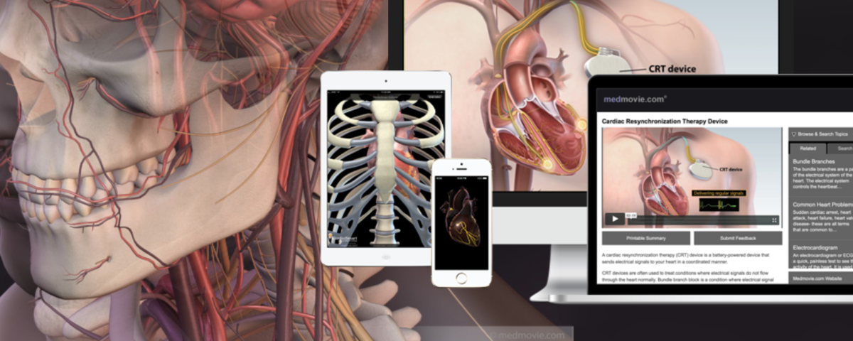 Medical education & illustration
